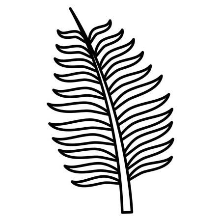 tropical leaf over white background, vector illustration Illustration