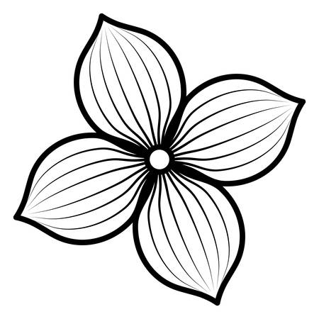 tropical flower over white background, vector illustration