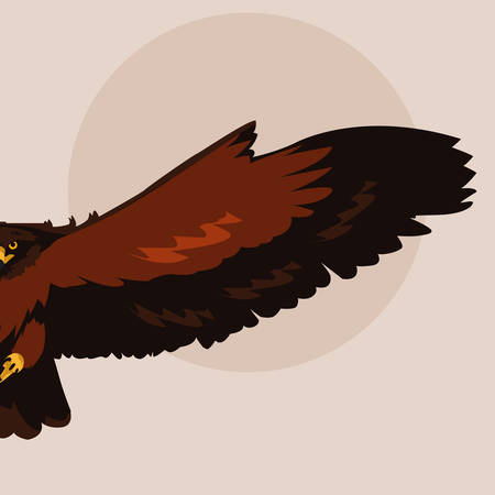imposing hawk bird flying vector illustration design Vectores