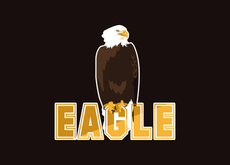 bald eagle bird with word vector illustration design 矢量图像