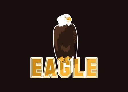 bald eagle bird with word vector illustration design