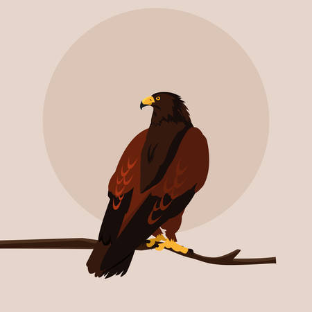 imposing hawk in the branch vector illustration design Illustration