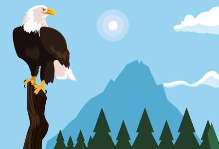 bald eagle bird in the branch with landscape vector illustration design