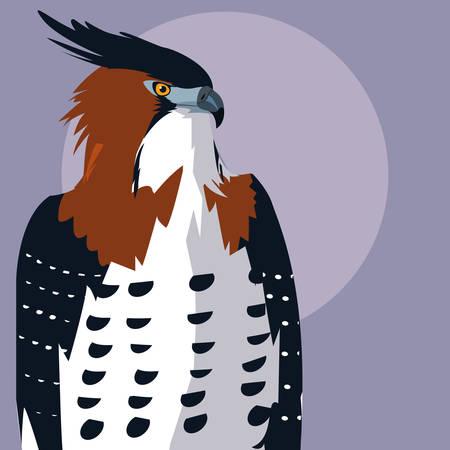 imposing hawk bird icon vector illustration design