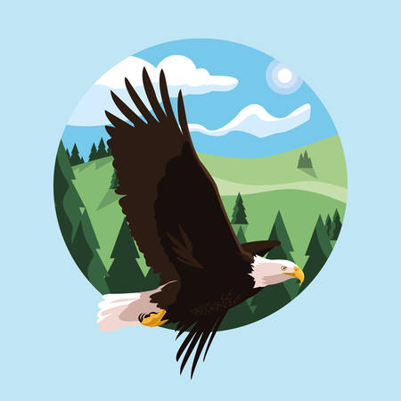 bald eagle bird flying with landscape vector illustration design