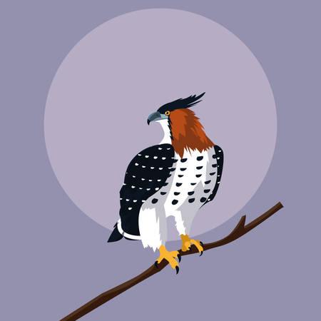 imposing hawk in the branch vector illustration design Vectores