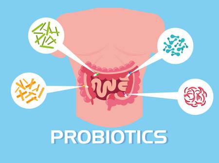 body of man with probiotics organisms vector illustration design