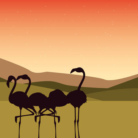 silhuette flamingos in the landscape vector illustration