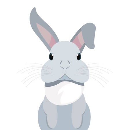 cute rabbit animal on white background vector illustration  イラスト・ベクター素材