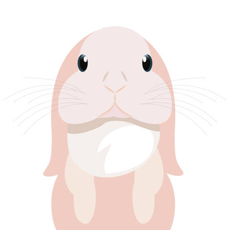 cute rabbit animal on white background vector illustration 向量圖像