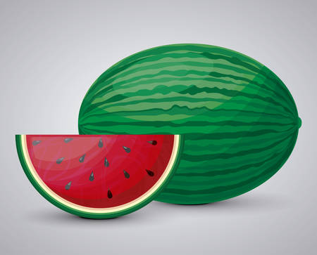 fresh healthy watermelon fruit vector illustration design  イラスト・ベクター素材