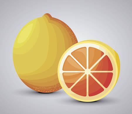 fresh orange fruit with slice vector illustration design