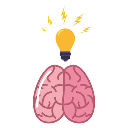 human brain bulb creativity on white background vector illustration