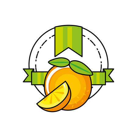 fresh orange citrus fruit icon vector illustration design