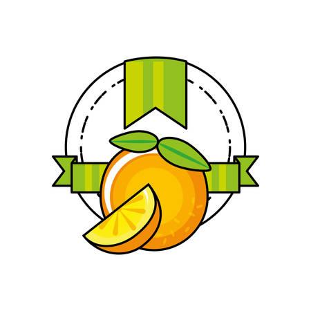 fresh orange citrus fruit icon vector illustration design