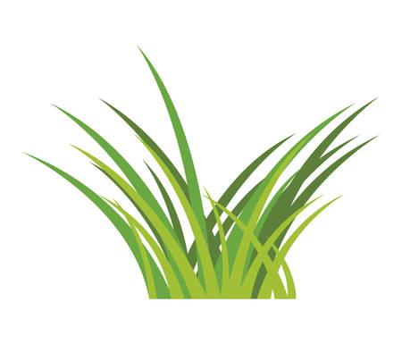 garden herb grass icon vector illustration design Stock Illustratie