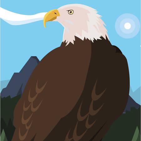 beautiful bald eagle animal in landscape vector illustration design Иллюстрация