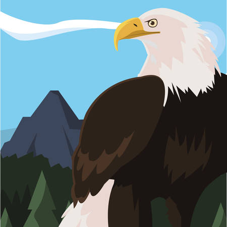 beautiful bald eagle animal in landscape vector illustration design 向量圖像