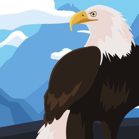 beautiful bald eagle animal in snowscape vector illustration design