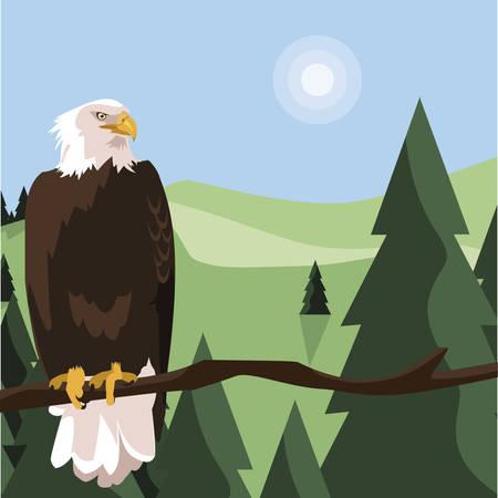 beautiful bald eagle in tree branch landscape scene vector illustration design Vettoriali