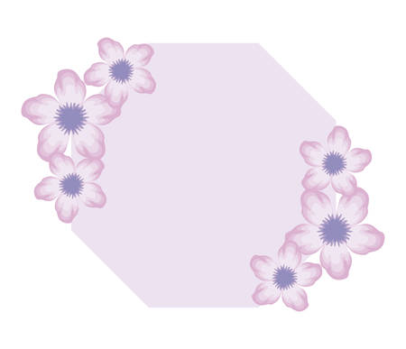 frame with beautiful flowers nature vector illustration design