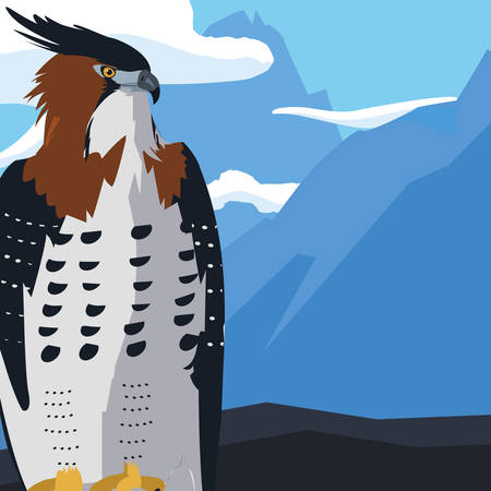 beautiful hawk majestic bird in the landscape vector illustration design