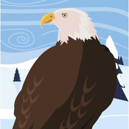 beautiful bald eagle animal in snowscape vector illustration design