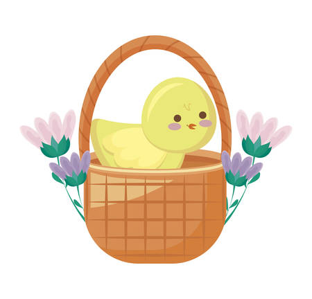 cute chicken in basket with flowers vector illustration design