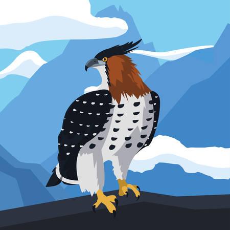 beautiful hawk majestic bird in the landscape vector illustration design