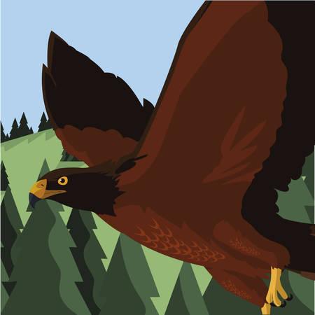 beautiful eagle flying in the landscape majestic bird vector illustration design Ilustração