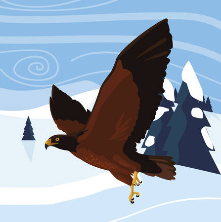 beautiful eagle flying in the snowscape majestic bird vector illustration design