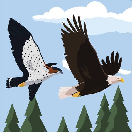 beautiful bald eagle and hawk flying in the landscape vector illustration design