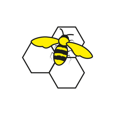 bee insect in honeycomb isolated icon vector illustration design