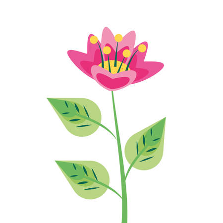 beautiful flower natural in branch and leafs vector illustration design