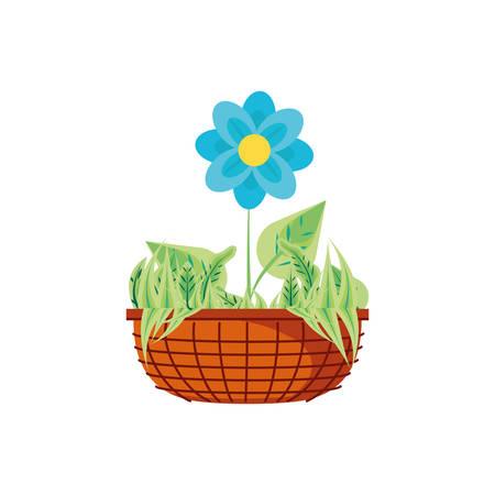 beautiful flower natural in pot plant vector illustration design Illustration