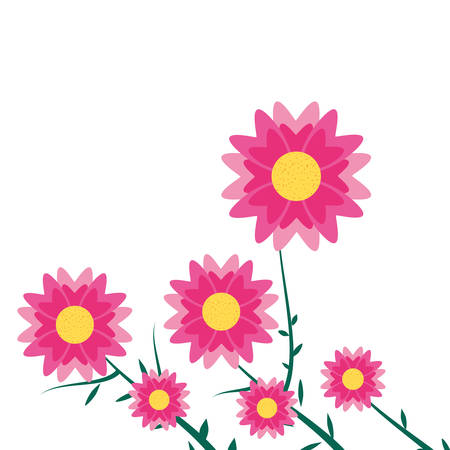 beautiful flowers naturals in branches vector illustration design Stock Vector - 122721570