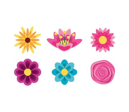 set of beautiful flowers naturals vector illustration design Stock Vector - 122721624