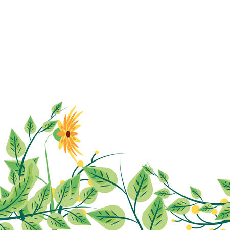 flowers naturals with set of leafs and braches vector illustration design