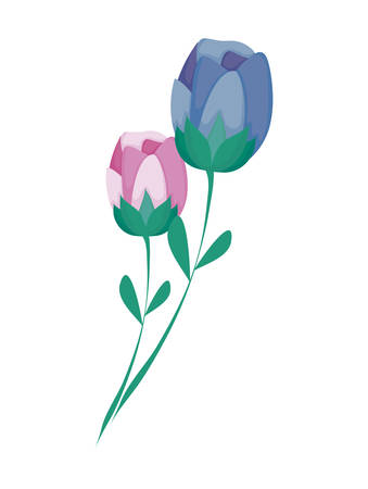 beautiful rose flowers nature icon vector illustration design