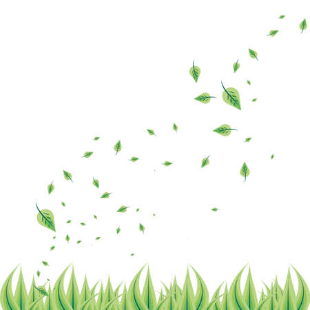 natural leafs isolated icon vector illustration design