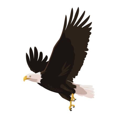 piękny łysy orzeł latający projekt ilustracji wektorowych