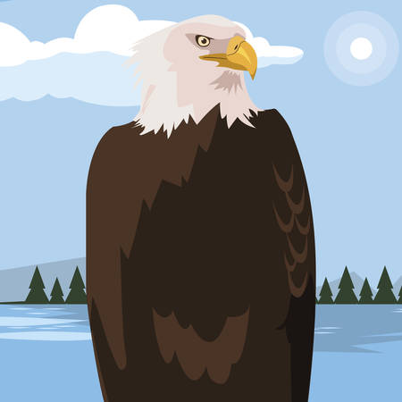 beautiful bald eagle animal in landscape vector illustration design Illustration