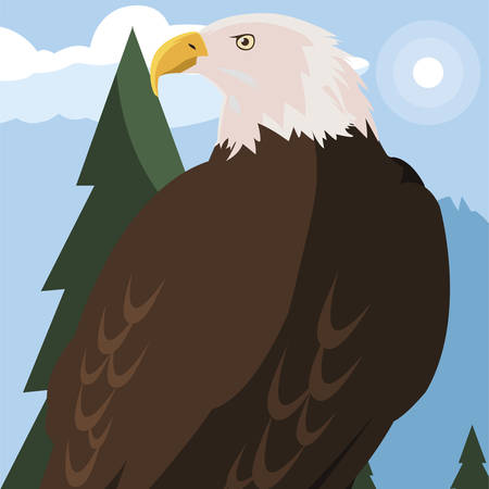 beautiful bald eagle animal in landscape vector illustration design