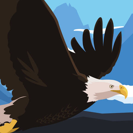 beautiful bald eagle flying in the snowscape vector illustration design