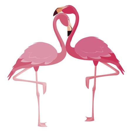 Flamingo élégant couple d'oiseaux vector illustration design Vecteurs