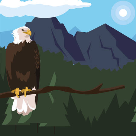 beautiful bald eagle in tree branch landscape scene vector illustration design Иллюстрация