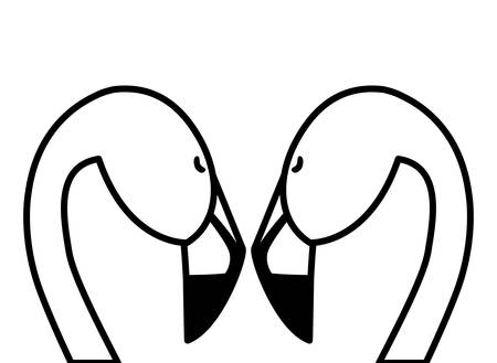 exotic flemish couple birds with romantic pose vector illustration design