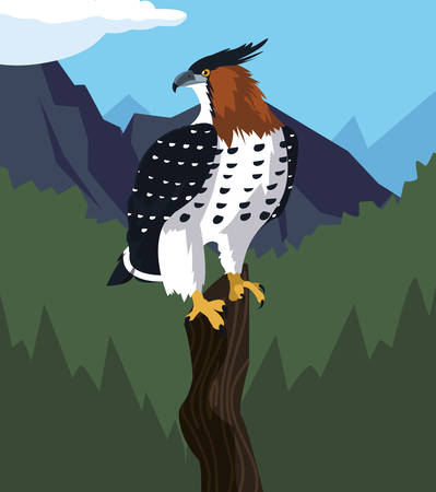 beautiful hawk in tree branch landscape scene vector illustration design