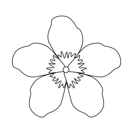 beauty flower isolated icon vector illustration design Stock Vector - 122264829