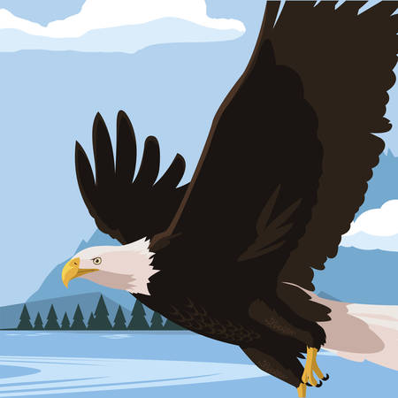 beautiful bald eagle flying in the lake scene vector illustration design Illustration
